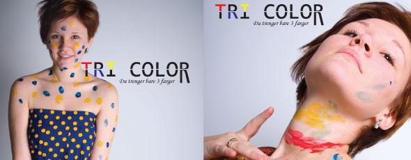 fargekart_590x230